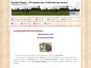 screenshot http://www.pension-chevaux-higues.fr.gd pension chevaux dans le gers