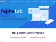 screenshot https://www.pepitelab.fr/ PepiteLab