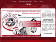screenshot http://www.pesi.fr/ récupération de données informatique en ile de france, pesi