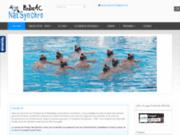 screenshot http://www.pessac-natsynchro.fr natation synchronisée à Pessac en gironde