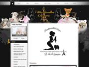 screenshot http://petitesmerveillesdaurore.chiens-de-france.com/ Acheter un chihuahua
