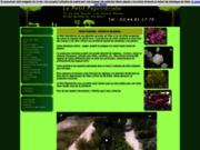 screenshot http://www.petitpepinieriste.fr jardinerie : le petit pépiniériste