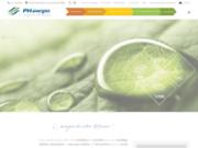 screenshot http://www.ph-energies.fr/ entretien et expertise vos systèmes de chauffage