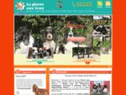 screenshot http://www.pierre-aux-leux.com elevage de golden retriever la pierre aux leux