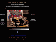 screenshot http://www.pierre-jean.net/live pierre-jean g. - photos de d'artistes, de concerts