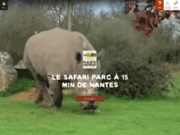 Planète Sauvage : Le Parc Safari entre Nantes et Pornic