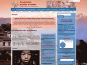 screenshot http://www.pomme-cannelle.org Association Pomme Cannelle