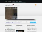 screenshot http://poncagedemarbreparis.com/ Entreprise de Ponçage de marbre à Paris