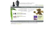 screenshot http://www.portail-feng-shui.com/ le feng shui pour les pros commerce, bureau,...