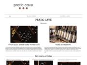 screenshot http://www.pratic-cave.fr pratic cave: cave à vin enterrée ou armoire?