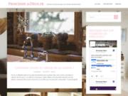 Princessedeco.fr : Des idées de génie pour décoration