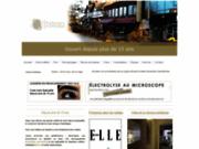 screenshot http://www.profusionsesthetique.com esthétique électrolyse maquillage permanent épilation au laser rive sud st-lambert esthéticienne