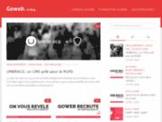 screenshot http://www.protecfoudre.fr linea sécurité - protection travaux en hauteur