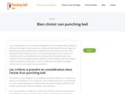 Punching-ball : avis & comparatif des meilleurs modèles