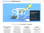 screenshot http://www.referencement-sud.net référencement montpellier