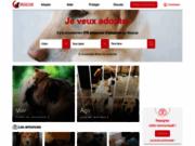 RESCUE forum d'adoption et protection des animaux.