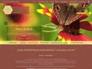 screenshot http://www.resurgence-soins-energetiques.com/ kinésiologue à amiens