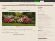 screenshot http://www.rhododendron.be rhododendron, azalée mollis et kalmia latifolia