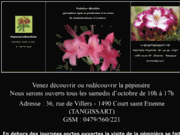 screenshot http://www.rhododendronwauthier.be rhododendrons et azalees