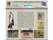 screenshot http://www.saint-hubert-bloodhound.fr/ le chien de saint hubert elevage du hameau jouas
