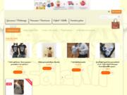 screenshot http://www.salsiffi.fr/boutique/index.php salsiffi