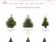 Sapins.be boutique en ligne de vente de sapins de Noël de qualité