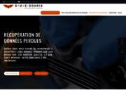 screenshot https://www.sauve-souris.fr informatique