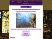 screenshot http://www.scoutisme-gien.org scoutisme des eclaireurs neutres de france à gien.