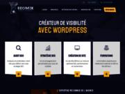 screenshot http://www.seomix.fr wordpress seomix