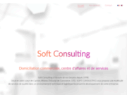 screenshot http://www.softconsulting.fr/ Soft Consulting