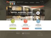screenshot http://www.solmaestro.ca sol maestro - ambiance sensorielle