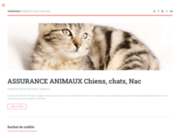 screenshot http://www.synergieassurance.fr synergie assurance