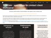 screenshot http://tlmcom.fr serveur vocaux interactifs