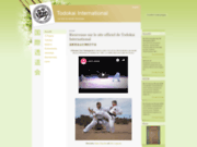 screenshot http://www.todokaiinternational.com todokai international, karaté shotokan