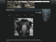 screenshot http://www.tourisme-inde.artasartists.com un jour en inde
