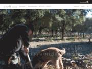 La truffes noir du vaucluse bio