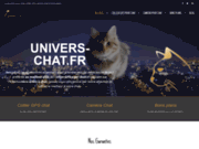 Univers Chat