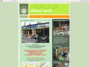 screenshot http://valmy-cycle.blogspot.com/ vélociste à paris - tous types de vélos