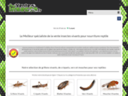 screenshot http://www.venteinsecte.fr vente insecte