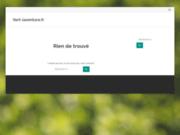 screenshot http://www.vert-laventure.fr vert l'aventure