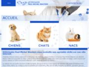 Soins pour chiens près de Hannut (Be) - Vétérinaire Paul-Michel Wauters