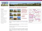 screenshot http://www.vignobledebordeaux.fr les grands vins de bordeaux et le vignoble bordela