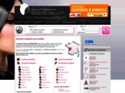 Salon de coiffure sur vincent-lefrancois.com