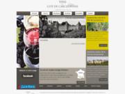 screenshot http://www.vins-citedecarcassonne.com/ les vins de la cité de carcassonne