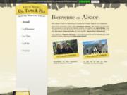 screenshot http://vins-tappe.fr vins d'alsace christian tappe et fils - sigolsheim