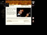 screenshot http://www.vinsfinslebrin.com château de l'aujardière