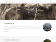 Voyages en pologne forêt de Bialowieza