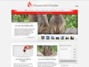 screenshot http://www.vos-vacances-en-vendee.fr vendée tourisme et vacances