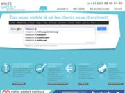 screenshot http://www.white-grizzly.fr/wg.nsf/pages/solution-micro-sites Outil de communication web franchisé