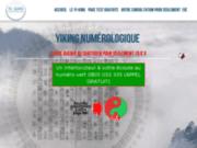 screenshot http://www.yiking-numerologique.com Le tirage du Yi-King